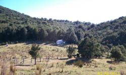 Currently running 3000 stock units with a history of 3000 - 4000 units the block is suited to both sheep and cattle, with good handling facilities for both. Access is very good with stable tracking, and subdivision into 50 blocks with permanent and